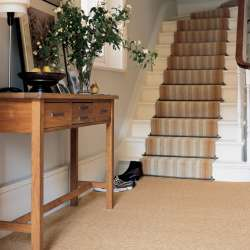 Good Hall And Stair Carpet Runners